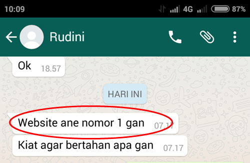 Testi Private SEO 2