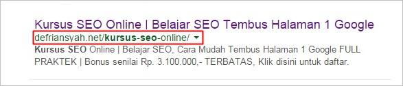 Belajar SEO On Page URL